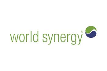 World Synergy Logo 350 x 233